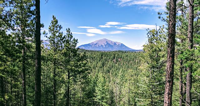 Wilderness Ridge Retreat in Colorado