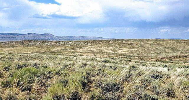 Sand Creek Ranch
